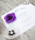 <!--:ro-->001_invitatie_anemone3<!--:-->