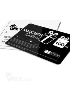 001_voucher100