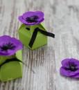 <!--:ro-->002_cutie_anemone1<!--:-->