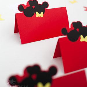 006_Minnie&Mickey_plic_bani3