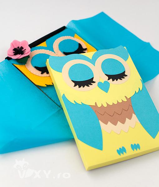 cutie book reader, cutie kindle, cutie handmade kindle, cutie nook, cutie handmade pentru tableta, cutie bufnita, cutie handmade personalizata