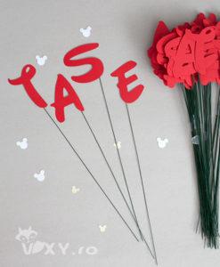 litere pe bete, litere pentru decor, nume decupat pentru petreceri tematice