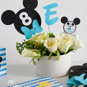 002_Mickey_nr_masa4
