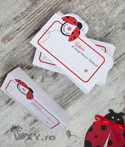 plic dar buburuza, place card tip plic, plic personalizat, tema buburuze, vixy.ro