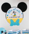 020_Mickey_bun_venit4