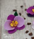 002_cocarde_orhidee4