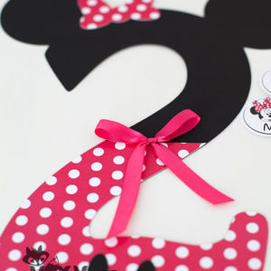 011_Minnie_cifra2
