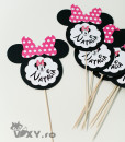 015_Minnie_decor_masa_nume4